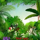 Tropikalny ranku krajobraz z drzewkami palmowymi i liśćmi ilustracji