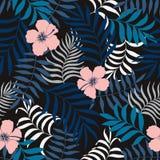 Tropikalny tło z palma kwiatami i liśćmi Bezszwowe flory Zdjęcie Royalty Free