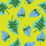 Tropikalny tło z palma kwiatami i liśćmi bezszwowy kwiecisty wzoru Lato wektoru ilustracja ilustracji