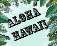 tropikalny tło aloha Hawaii Fotografia Royalty Free