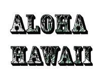 tropikalny tło aloha Hawaii Zdjęcie Stock
