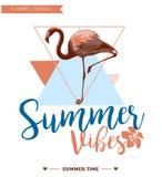 tropikalny tło Lato projekt Dziewczyny koszulki mody wektorowa grafika Zdjęcie Royalty Free