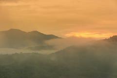 Tropikalny tropikalny las deszczowy w Hala-Bala przyrody sanktuarium ranek Obrazy Royalty Free