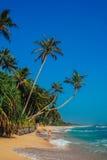 Tropikalny urlopowy wakacyjny tło - raj idylliczna plaża Sri Lanka Obraz Stock
