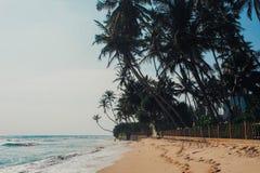 Tropikalny urlopowy wakacyjny tło - raj idylliczna plaża Sri Lanka Obrazy Royalty Free