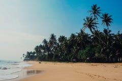 Tropikalny urlopowy wakacyjny tło - raj idylliczna plaża Sri Lanka Zdjęcia Stock