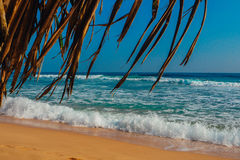Tropikalny urlopowy wakacyjny tło - raj idylliczna plaża Sri Lanka Zdjęcie Stock