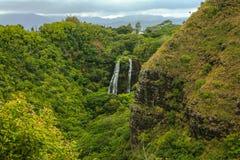 Tropikalny Wailua Spada Kauai Hawaje zdjęcie royalty free
