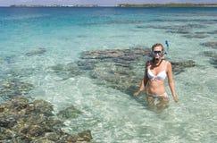 Tropikalny wakacje - Kucbarskie Wyspy Zdjęcia Royalty Free