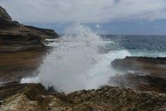 Tropikalny widok, Lanai punkt obserwacyjny, Hawaje Obraz Stock