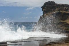 Tropikalny widok, Lanai punkt obserwacyjny, Hawaje Obrazy Royalty Free