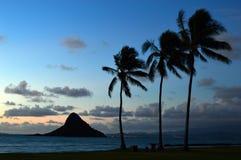 tropikalny wschód słońca Obraz Royalty Free