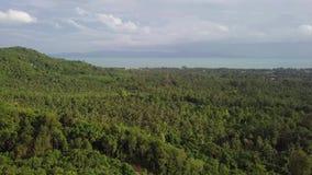 Tropikalny wyspa brzeg z Zwartym Zielonym lasem i drzewka palmowe w Tajlandia widok z lotu ptaka zbiory wideo