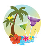 Tropikalny wyspa napój Zdjęcia Stock
