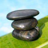 tropikalny zen. Obrazy Stock
