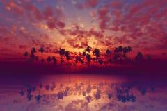 Tropikalny zmierzch Obraz Royalty Free