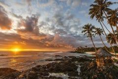 Tropikalny zmierzch Zdjęcia Stock