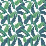 Tropikalnych liści bezszwowy wzór Drzewka palmowego tło Zdjęcia Royalty Free