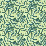 Tropikalnych liści bezszwowy wzór, nowożytna ręka rysujący natury ulistnienie Zdjęcia Royalty Free