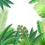 Tropikalnych liści kwiecisty projekt Fotografia Stock