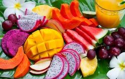 Tropikalnych owoc asortyment z świeżym sokiem, palmowego liścia tło Odg?rny widok z bliska obraz stock