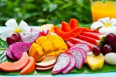 Tropikalnych owoc asortyment z ?wie?ym sokiem, palmowego li?cia t?o z bliska obrazy stock
