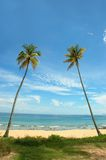 tropikalnych wakacji obrazy stock