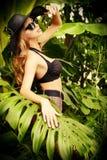 Tropique modèle Photographie stock libre de droits