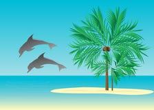 Tropiques, illustration libre de droits