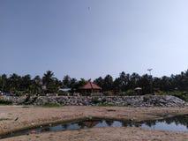 tropisch Stock Afbeelding