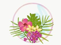 tropisch Royalty-vrije Stock Afbeeldingen