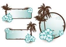 Tropisch bannersblauw - vector Royalty-vrije Stock Afbeelding