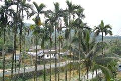 Tropisch bergdorp royalty-vrije stock afbeelding