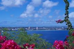 Tropisch bloemen en strand Stock Foto's