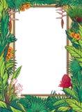Tropisch Bloemenkaartkader Stock Foto