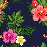 Tropisch bloemenpatroon Stock Foto's