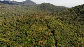 Tropisch bos op eiland Fantastische hommelmening van groene wildernis op bergrand van verbazend tropisch eiland exotisch stock videobeelden