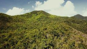 Tropisch bos op eiland Fantastische hommelmening van groene wildernis op bergrand van verbazend tropisch eiland exotisch Paradise stock videobeelden