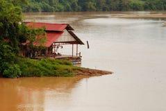 Tropisch boslandschap in Maleisië Stock Foto's