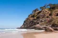 Tropisch Braziliaans Strand Stock Fotografie