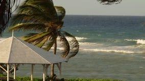 Tropisch Caraïbisch die beachfronthotel in Montego Bay, Jamaïca wordt gevestigd stock videobeelden