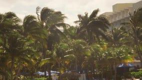 Tropisch Caraïbisch die beachfronthotel in Montego Bay, Jamaïca wordt gevestigd stock video