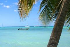 Tropisch Caraïbisch strand Stock Afbeelding