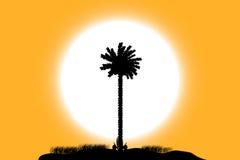 Tropisch eiland bij zonsondergang royalty-vrije illustratie