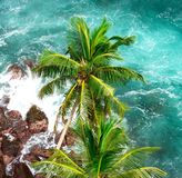 Tropisch eiland in de Indische Oceaan Stock Foto's