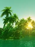Tropisch eiland in de zonsondergang Stock Foto