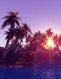 Tropisch eiland in de zonsondergang Royalty-vrije Stock Fotografie