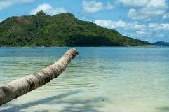 Tropisch Eiland en glashelder water Royalty-vrije Stock Afbeelding