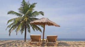 Tropisch eiland exotisch strand, kokosnotenpalm, houten sunbeds, rietparaplu stock video