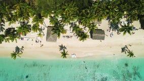 Tropisch Eiland Exotisch strand met rond palmen Vakantie en Vakantieconcept stock videobeelden